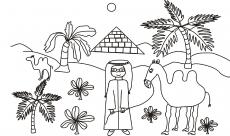 Mały Ali i wielbłądy na pustyni