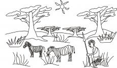 Mały Simba zbliża się do zebry