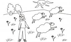 Mała Ula  i biegające owieczki