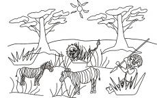 Mały Simba poluje na zebry