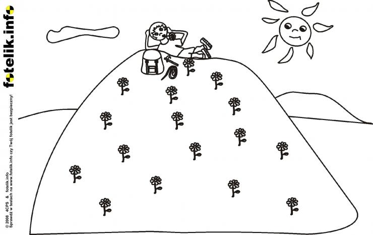Piotruś na polnej górce