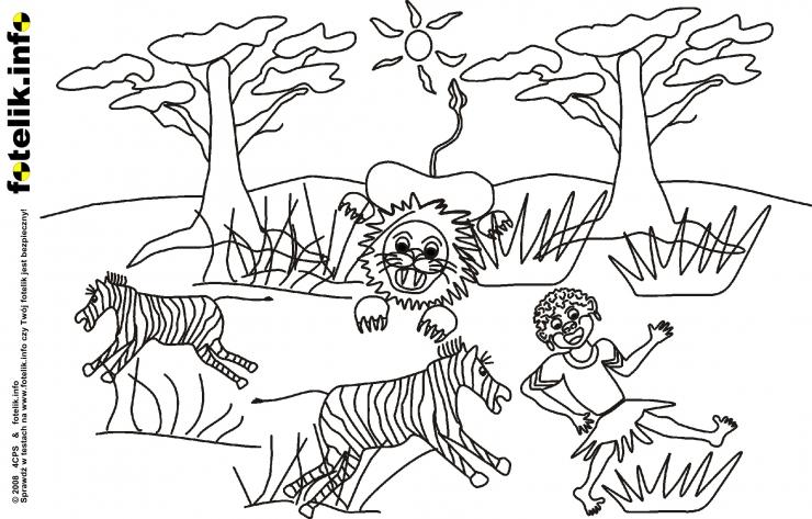 Polowanie na małego Simbe i zebry
